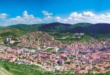 Satılık Arı Yozgat
